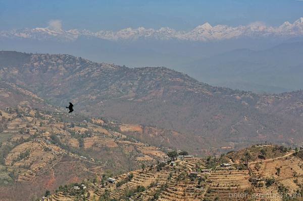 Nepal - Final tribute #9