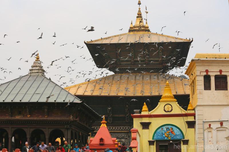 Nepal   Final tribute #10