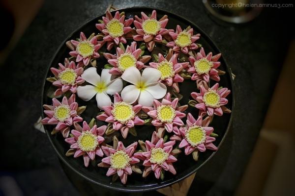 Frangipani and lotus flowers