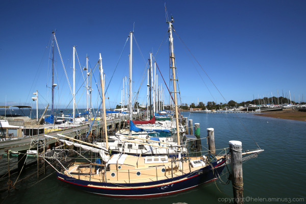 The marina