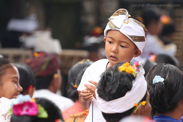Festival: Boy