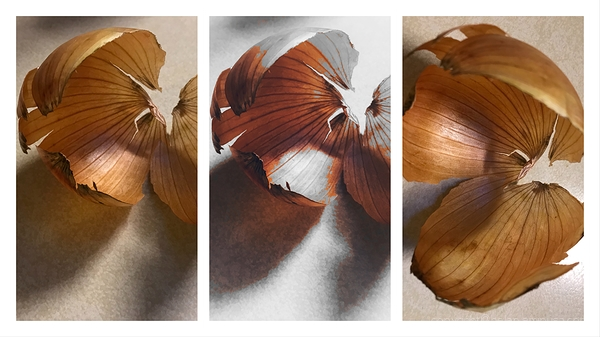 Onion Triptych