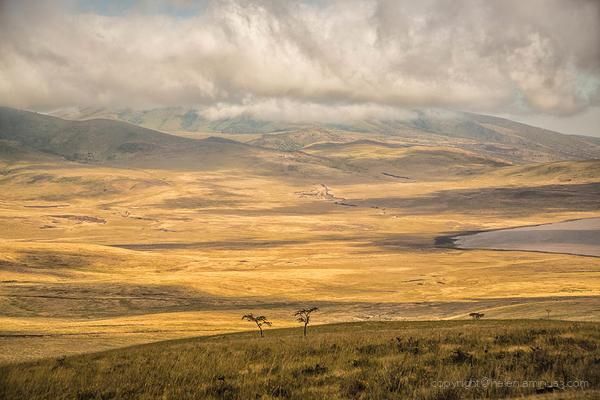 Ngorongoro Crater: 1