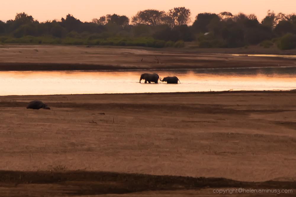 Zambia: South Luangua - 2