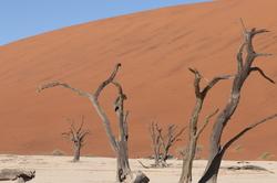 Namibia: Soussusvlei 4