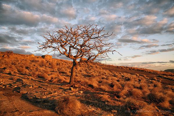 Zimbabwe: Matabo Hills 5