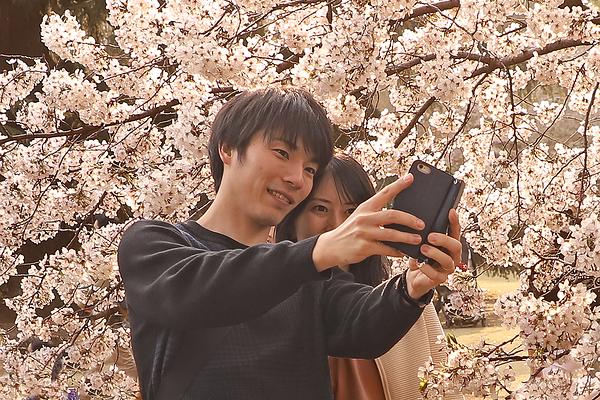 Spring blossom selfie - Tokyo