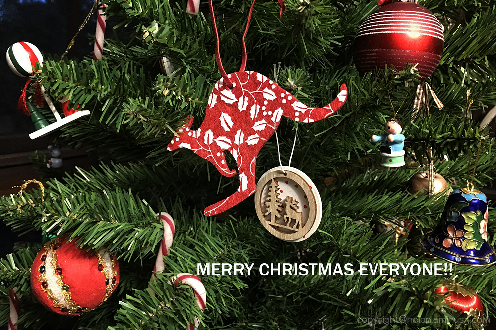 Merry Xmas from Australia!