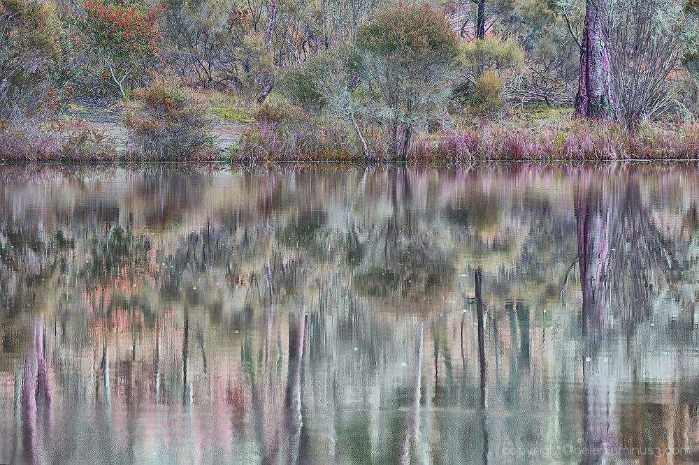 Reflecting at Jells