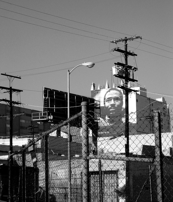 Urban jungle Los Angeles, California.