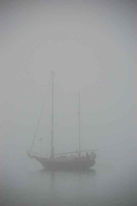 Misty Mooring
