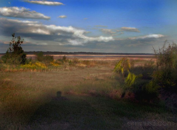 LAKE JACKSON FLORIDA