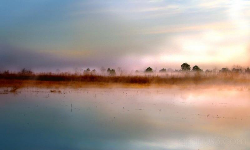 FOG OVER LAKE JACKSON