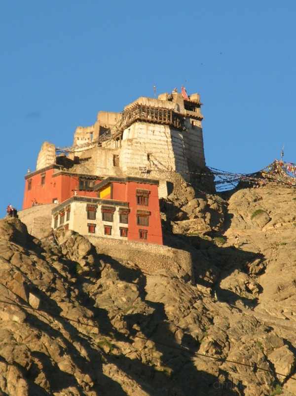 Leh viewpoint