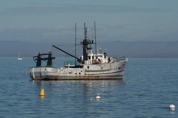 Fishing Boat at Monterey