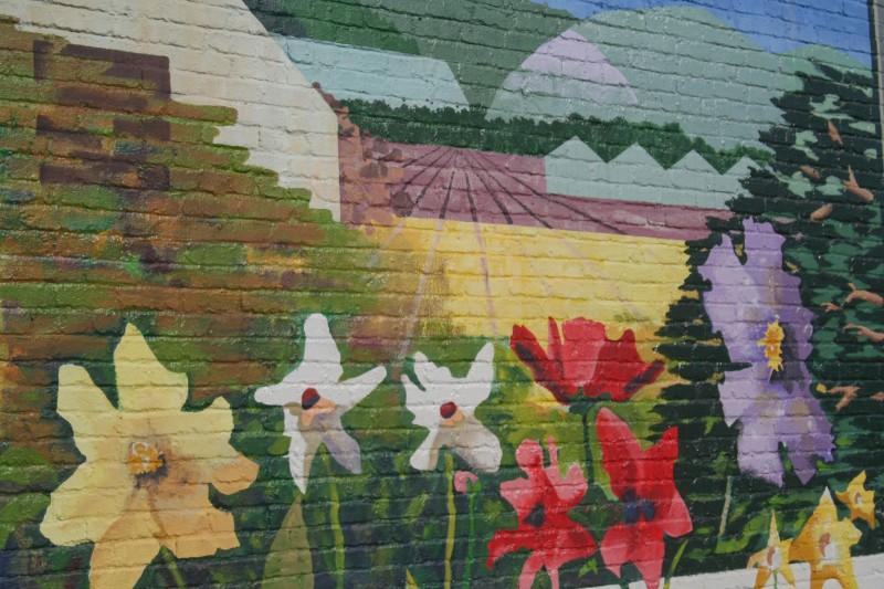 Wall Mural, Half Moon Bay, California