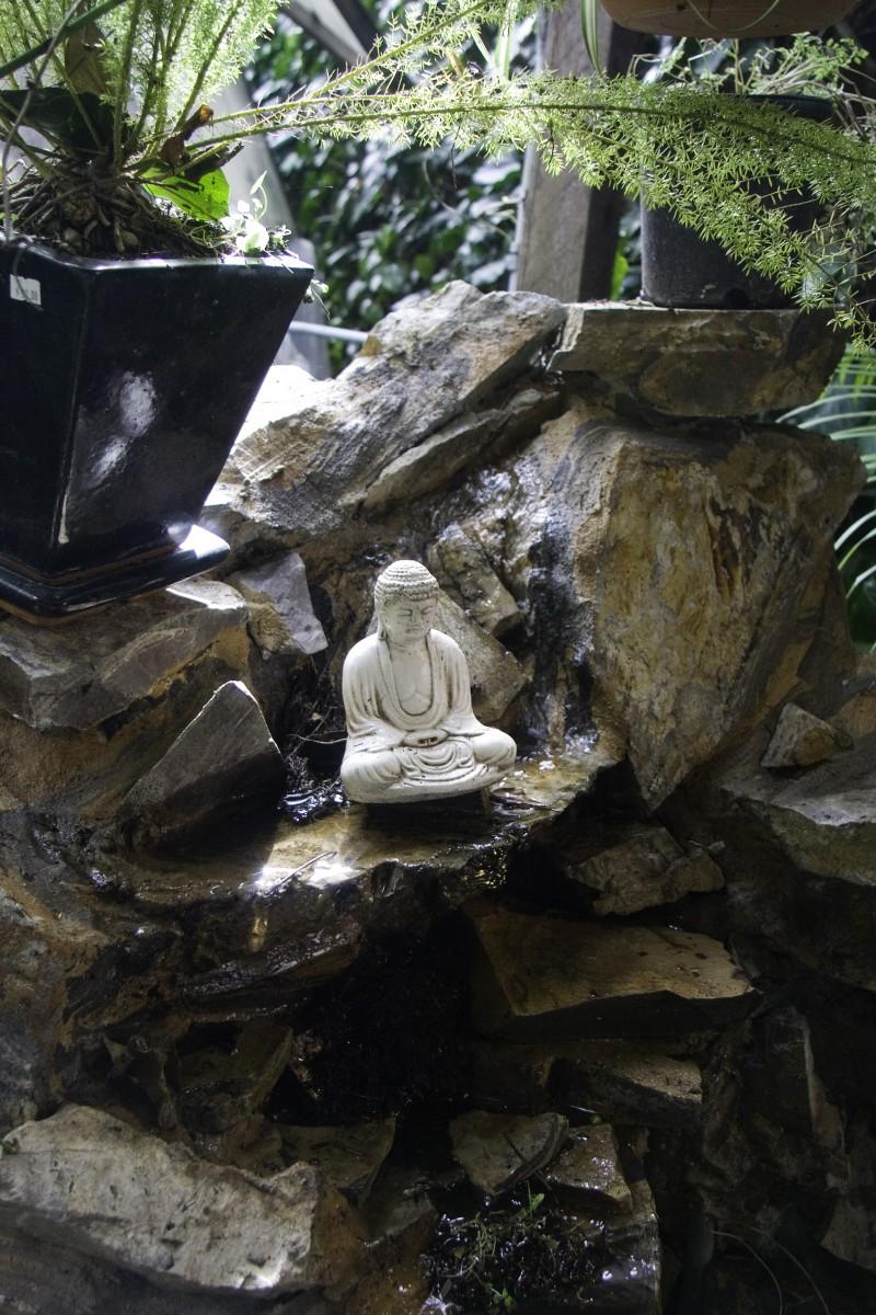 Garden in Carmel, California