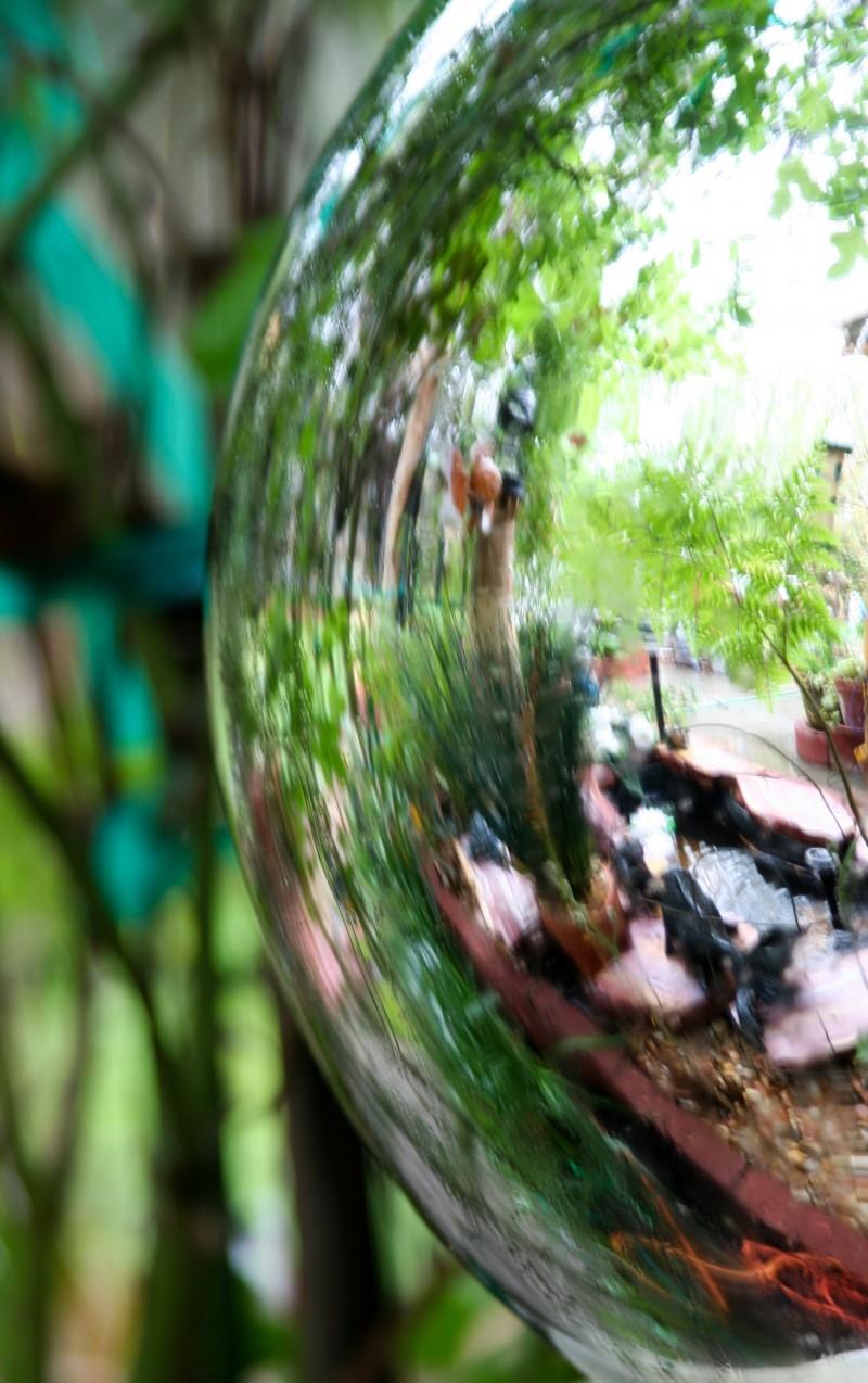 Reflecting Ball in the Garden