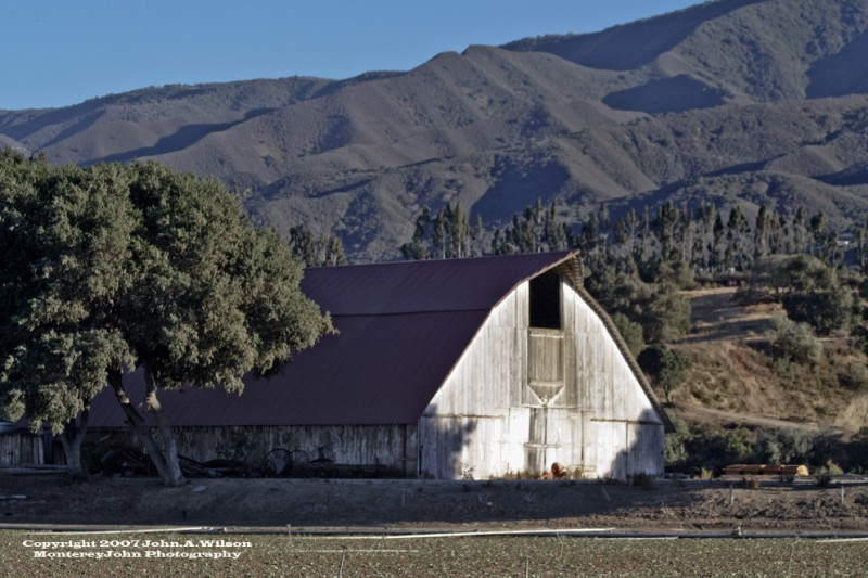 Barn in the Salinas Valley