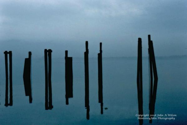 Greenwich Point Foggy Day
