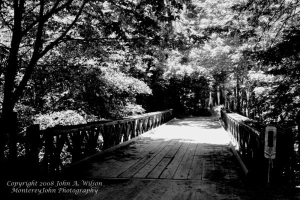 Bailey Bridge Over Big Sur Mountain Stream