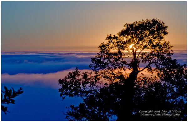 Big Sur above the Fog at Neptenthe Restaurant