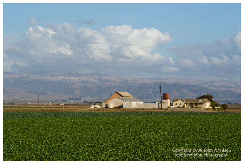 Farm in the Salinas Valley, CA