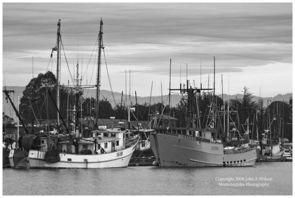 Fishing Boats at Eureka California