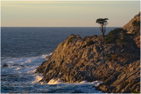 Pt Lobos in Winter Light