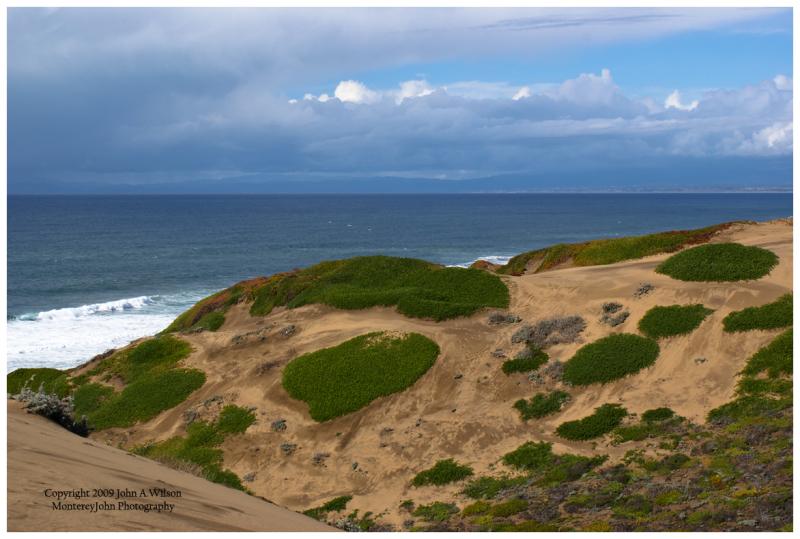 Monterey Bay from Marina Dunes