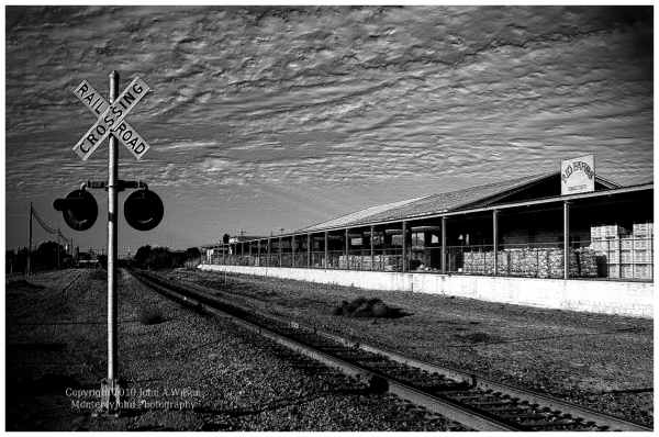 King City, Salinas Valley, CA