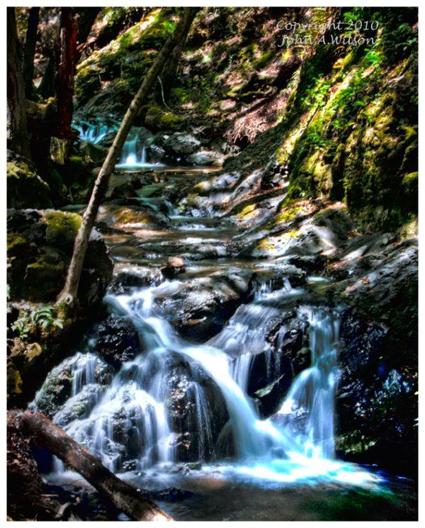 Uvas Canyon, Santa Cruz Mountains, CA