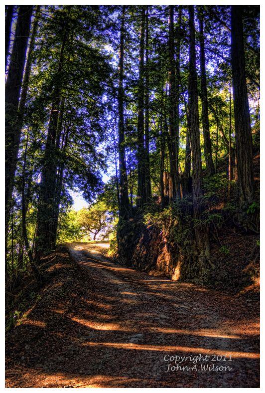 Old Coast Road, Big Sur