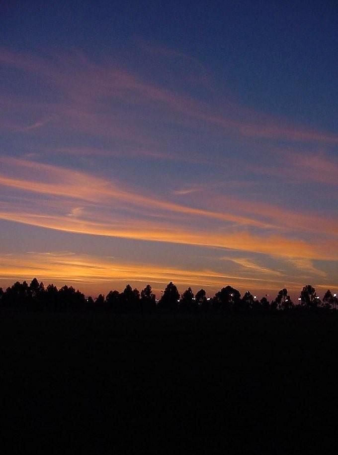 Bayland sunset