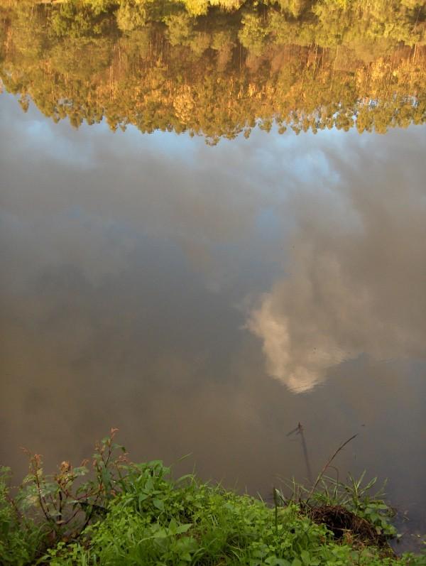 Rio Mondego 1 - Mondego River