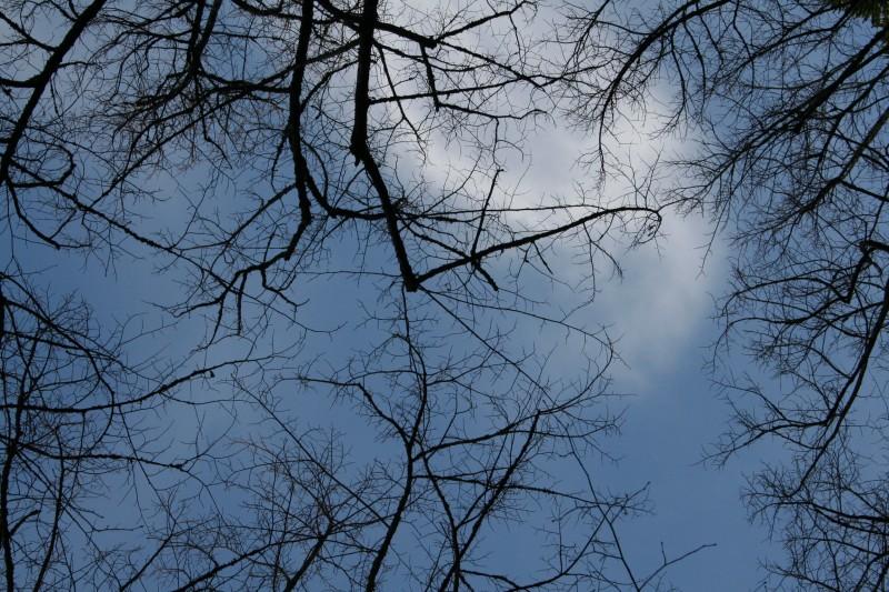 Escrever no céu - Writing in the sky