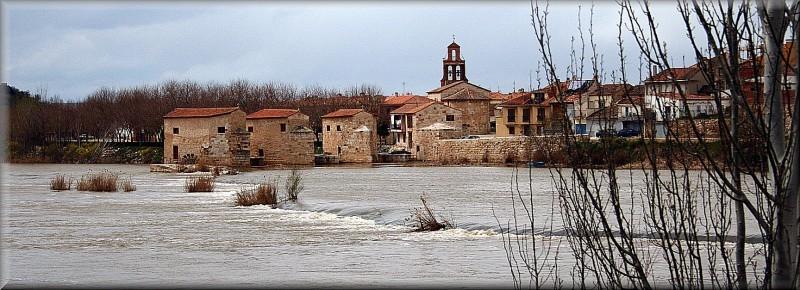 Zamora I