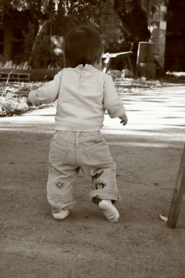 Primeiros Passos - First steps