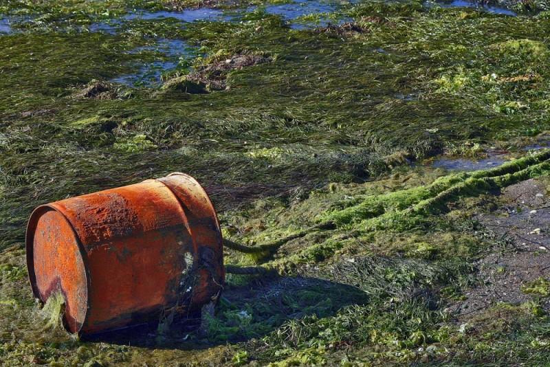 praia mar lixo algarve