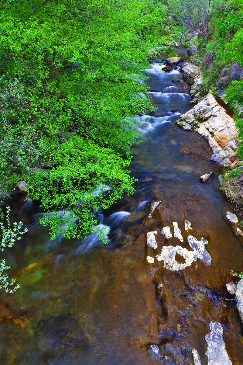 dourointernacional rio