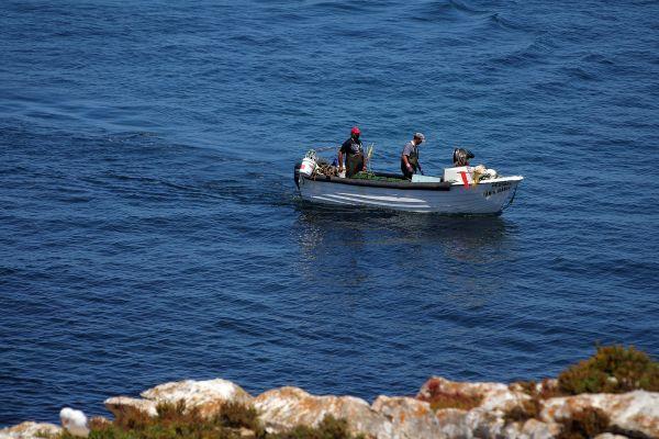 pescador peniche barcos mar