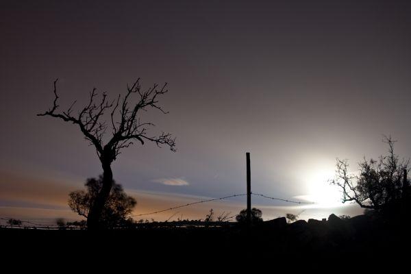 Saws Aires e Candeeiros at night