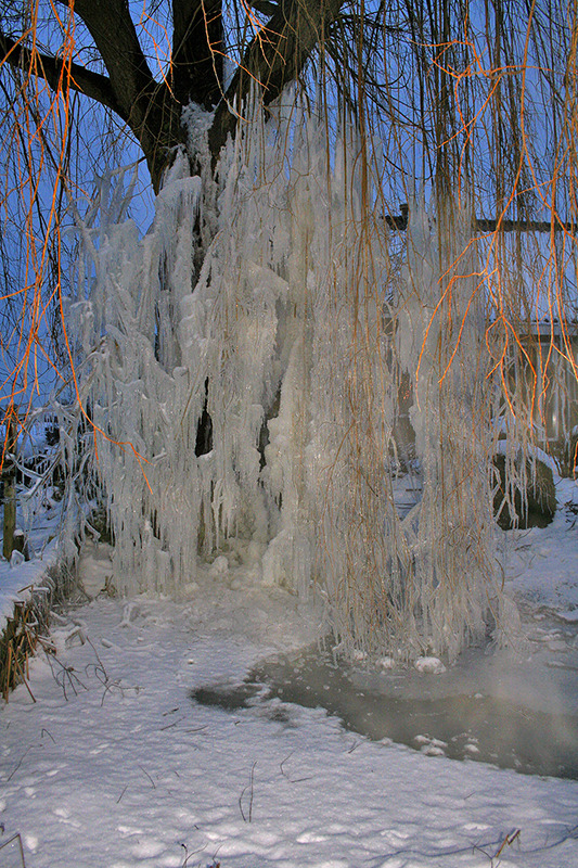 ameide holanda neve arvore inverno gelo