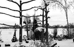 ameide holanda neve  inverno