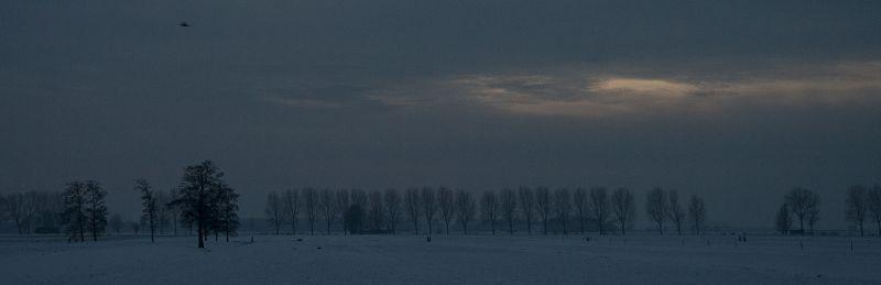 ameide holanda neve inverno arvore