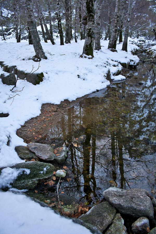 serraestrela neve inverno covãodaametade
