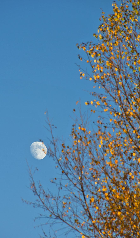 lousã lua
