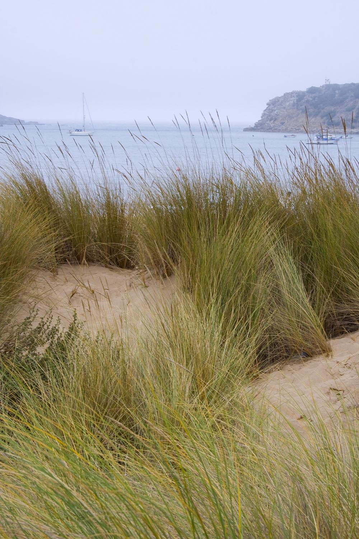 praia mar s-martinho-do-porto
