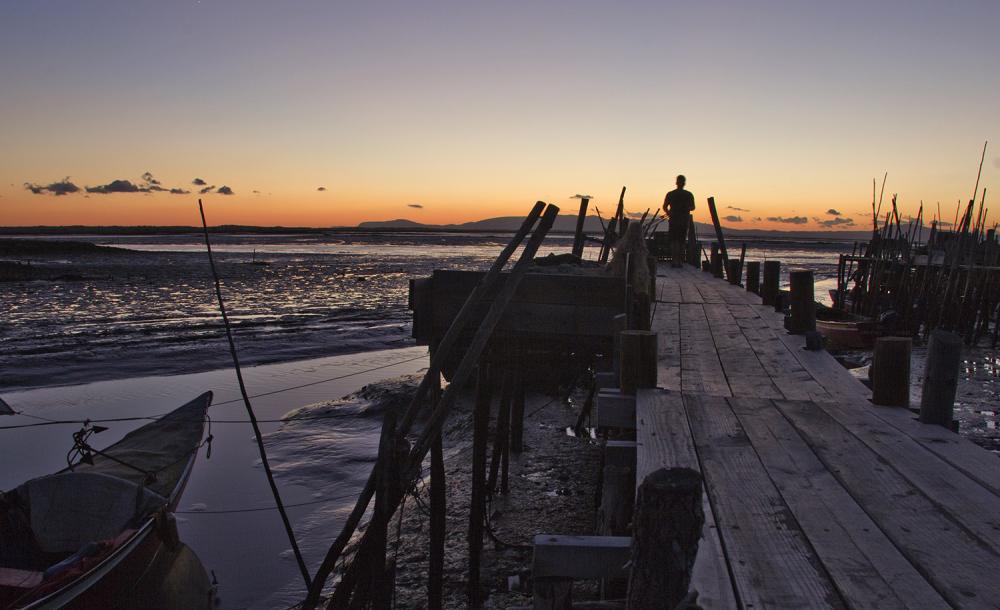 barcos rio sado carrasqueira
