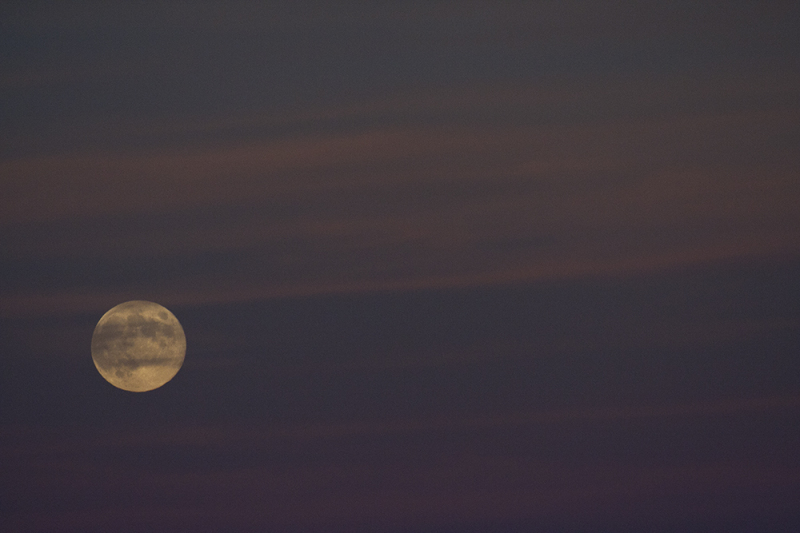 lua serraestrela moon